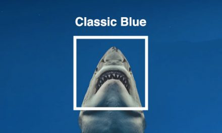 Classic Blue – the Colour of 2020
